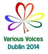 VV Dublin 2014 logo
